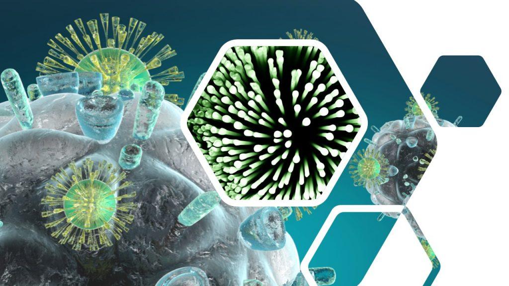 Sistema Inmune y Microbiota