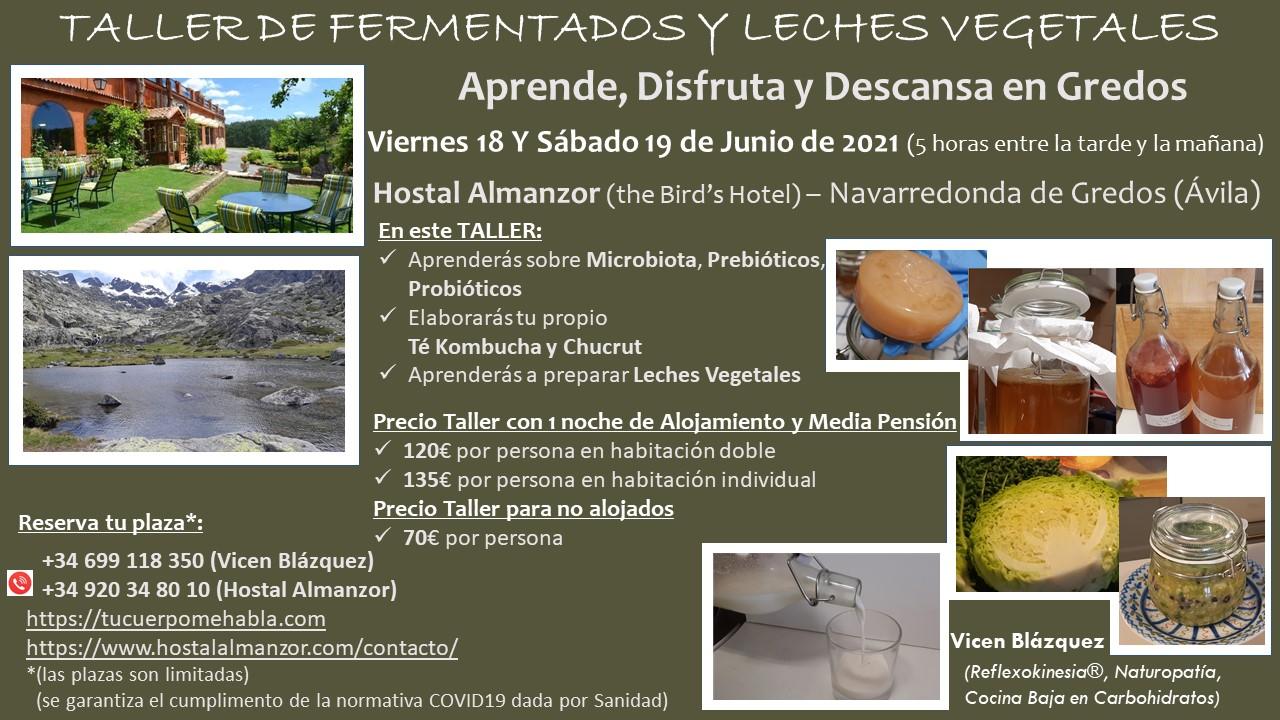 En este momento estás viendo TALLER DE FERMENTADOS Y LECHES VEGETALES [Gredos – 18 y 19 de junio 2021]